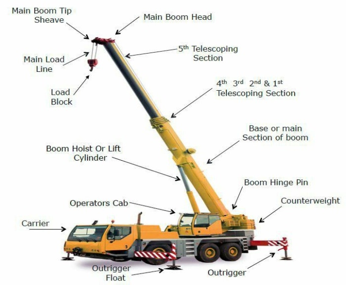 Step 1 31 - Cranes Downloads